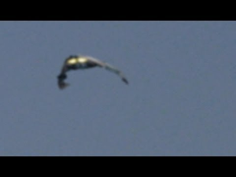 REAL UFO SIGHTING IN HUNGARY 2013 -  6.3KB