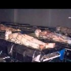 Bodies of Aliens Roswell UFO Crash 1947, as no one had ever seen