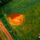 The Secret Code of UFO ET Crop Circles Feature Film
