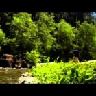 National Geographic's American Paranormal:  Bigfoot   1/4