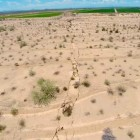 Giant Earth Crack Appears In Mexico 21 August 2014