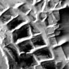 plants artificial structures, Mars Discovery: Alien Buildings, ruins, water, (Anomalies