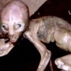 10 Things You Didn't Know About Area 51 – Alltime10s