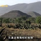 [Cantonese] Mexico world heritage site :: Pre Hispanic City of Teotihuacan 墨西哥世界遗产 特奥蒂瓦坎