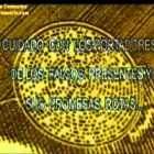 Alien Face Crop Circle with Binary Code Message (2015)