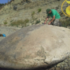 UFO Groups Found Alien Spacecraft That Crash Landed On Earth Millions of Years Ago